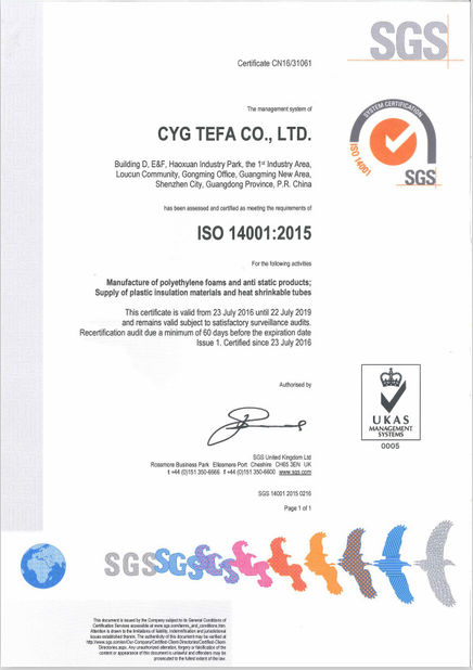 중국 Cyg Tefa Co., Ltd. 인증